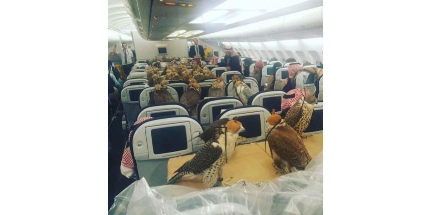 Príncipe saudita compra 80 passagens de avião para pássaros de estimação