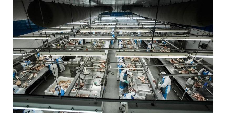 A politicagem que prejudica a carne brasileira