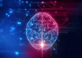 Cérebro se mantém ativo 10 minutos após morte de paciente
