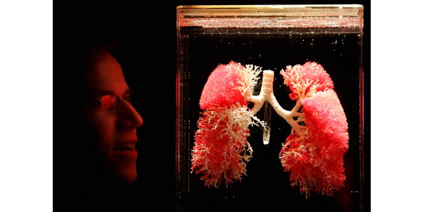 Cientistas descobrem função inesperada dos pulmões