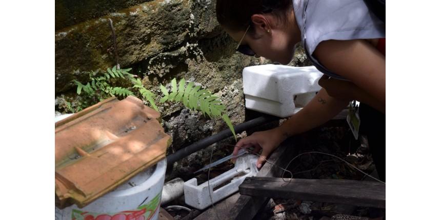 Dia Mundial da Saúde tem reforço no combate ao Aedes