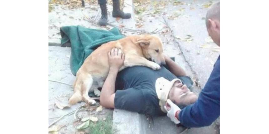 Cachorro se recusa a largar dono após homem sofrer acidente