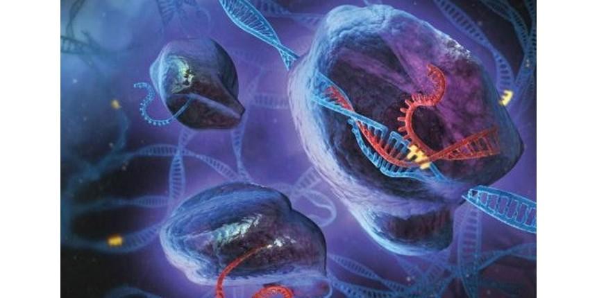 Pesquisadores anunciam ter eliminado HIV em animais com técnica de edição de DNA