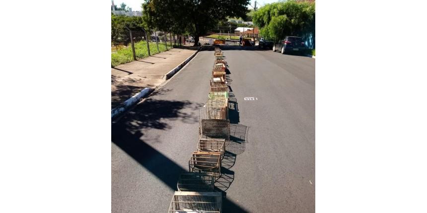 Mais de 620 gaiolas usadas em cativeiro ilegal são destruídas