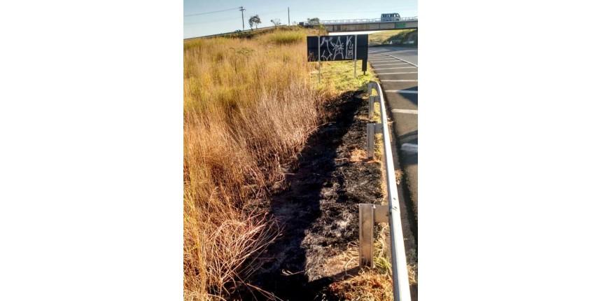 Dois são presos em Marília por colocar fogo em mato próximo a rodovia