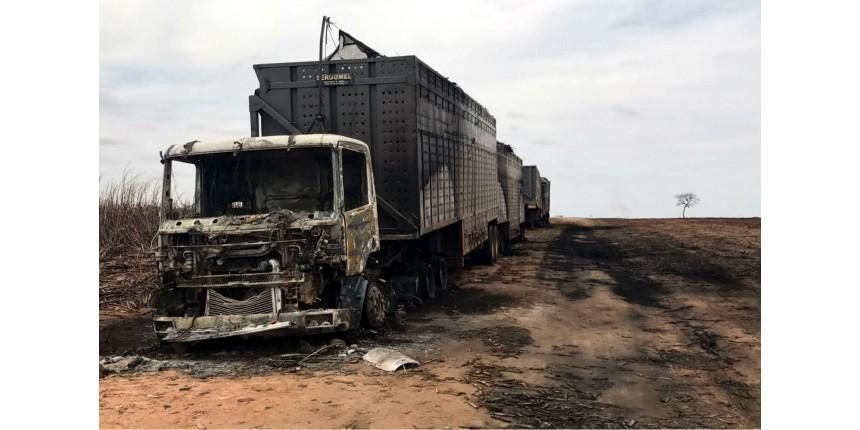 Incêndio de 12 horas destrói plantações, caminhões e máquinas