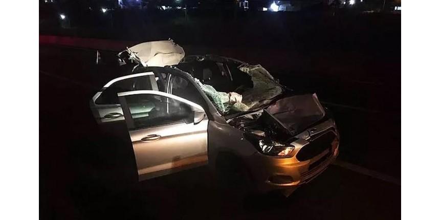 Três pessoas ficam feridas após carro atingir animal solto na rodovia