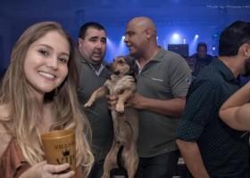 Foto de cachorro 'penetra' em balada sendo expulso por segurança viraliza
