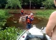 Homem é flagrado fazendo pesca ilegal em Itapuí e tenta...