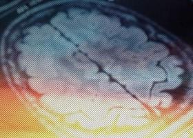 Você só usa 10% do cérebro? Pode aprender idiomas dormindo? Conheça 6...