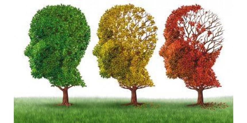 Insulina contra o Alzheimer