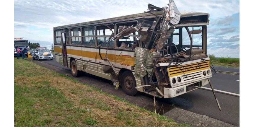 Acidente envolvendo ônibus e caminhão interdita rodovia
