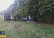 Briga de casal provoca acidente e mulher morre na Rodovia