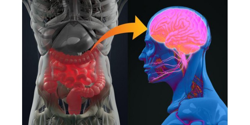 Como as bactérias que você carrega podem estar afetando seu estado de espírito
