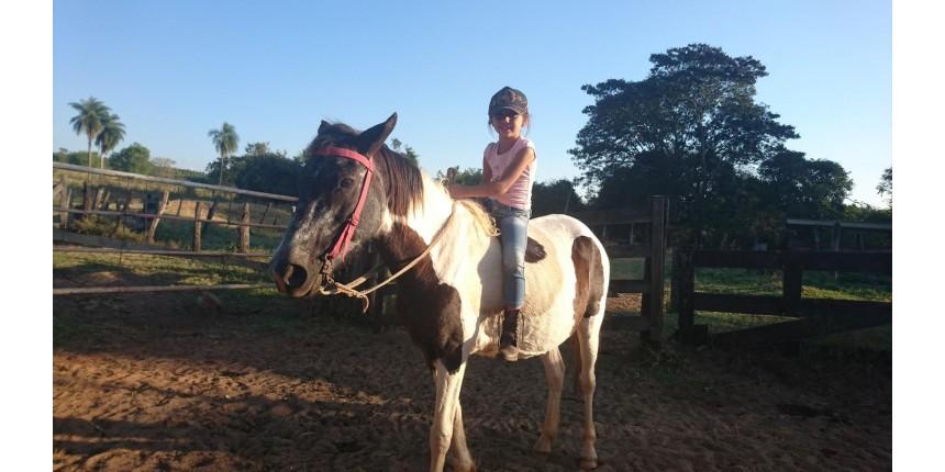 Menina de 6 anos chama a atenção ao montar cavalo e pastorear gado: 'Quero ser boiadeira'