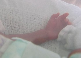 Bebê que nasceu com 800g deve ficar internado por três meses; mãe...