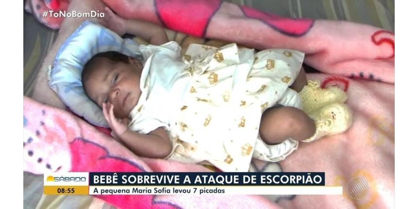 Pediatra que atendeu bebê picada por escorpião escondido em fralda diz que recebeu criança ainda com animal vivo no corpo: 'Susto'