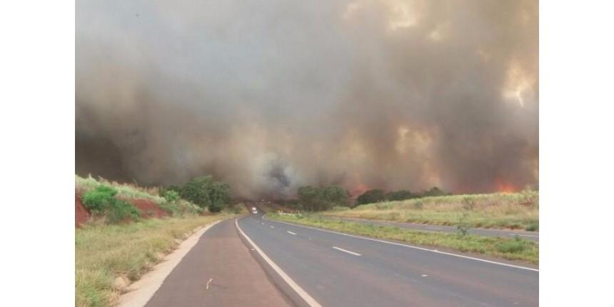 Entrevias registra 263 incêndios às margens de rodovia