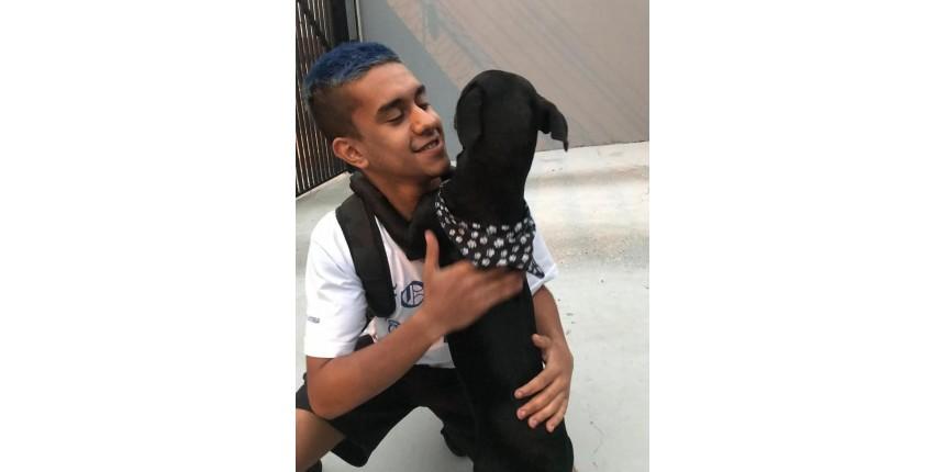 Estudante viaja mais de 300 km para reencontrar cão que conheceu em festa: 'Sensação mágica'