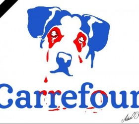 Morte de cachorro em unidade do Carrefour gera onda de...