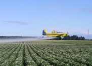 Governo brasileiro liberou registros de agrotóxicos altamente tóxicos