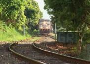 Jovem que teve braço decepado por trem segue na UTI:...