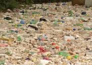 Rio Tietê transborda após chuva e lixo invade ruas de...