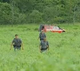 Homem abandona carro com 340 kg de maconha, cai em...
