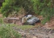 Mãe e filha morrem após carro ser arrastado pela enxurrada...