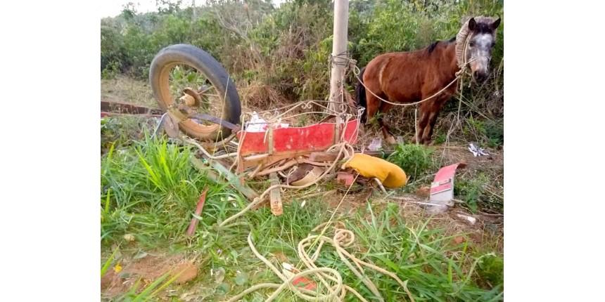 Homem em charrete morre após acidente com caminhonete