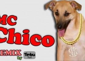 Famoso por destruir quarto, cão Chico vira tema de funk: 'Daqui a...