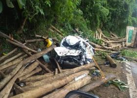 Caminhão tomba e dois morrem atingidos por toras de madeira que caíram...