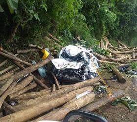Caminhão tomba e dois morrem atingidos por toras de madeira...
