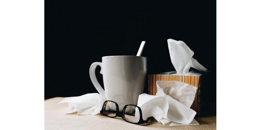 5 alimentos que ajudam a melhorar a imunidade