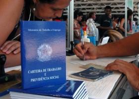 Dia do trabalho: diferentes profissionais se expõem durante pandemia