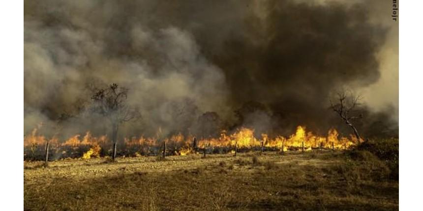 PF busca responsáveis por queimadas que destroem o Pantanal de MS