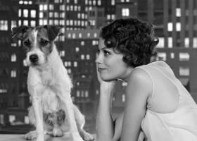 20 filmes que você precisa assistir para se tornar um cinéfilo, disponíveis...