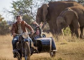 5 filmes na Netflix para encarar a segunda-feira com serenidade e esperança