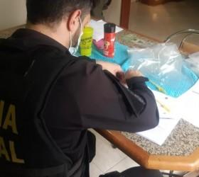 Araçatuba: Polícia Federal prende mais um suspeito em operação contra...