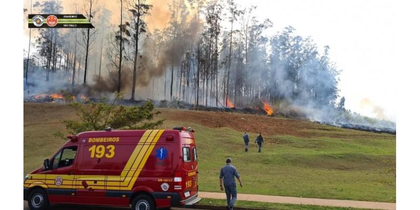 Avião cai em área de mata e sete pessoas morrem em Piracicaba